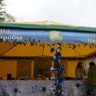 Поляна высшей пробы возникла на Златфесте 2016